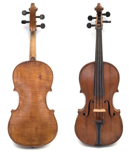 Viola 700