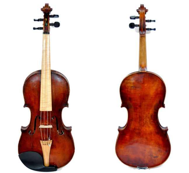 violin peñaloza